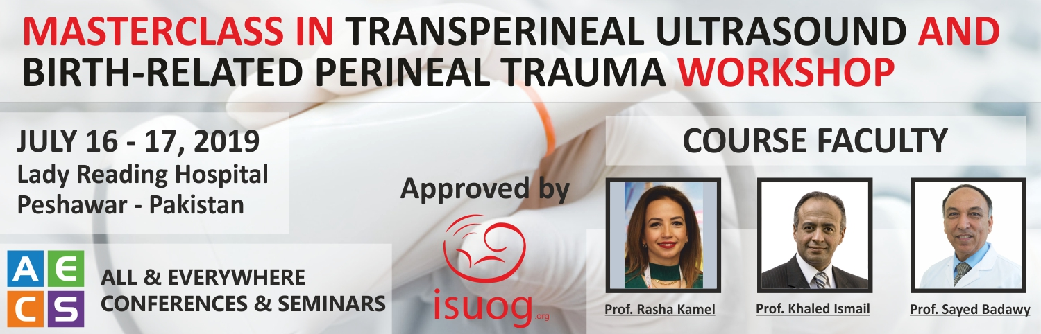 Masterclass in Transperineal Ultrasound and Birth-related Perineal Trauma Workshop